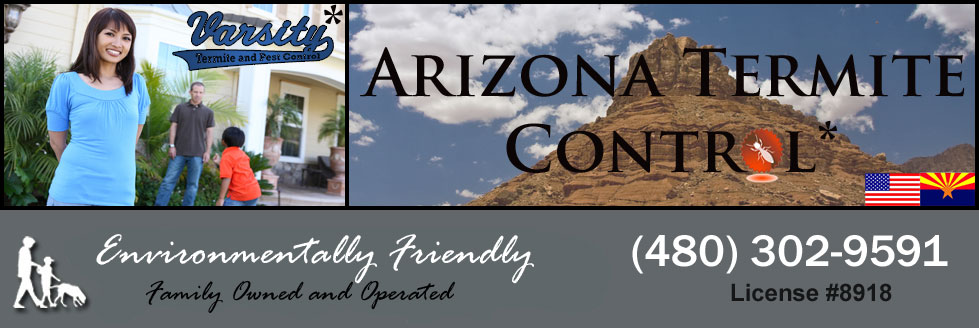 Arizona Termite Control Is Here To Help You