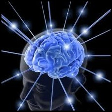 Brain Boosting Food
